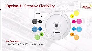 Creative Flexibility-Option 3(Apex).jpg